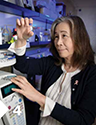 UA Early Phase Chemoprevention Consortium co-director, Dr. Sherry Chow