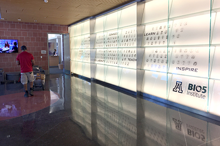 """The Research """"Wall of Fame"""" at the University of Arizona BIO5 Institute"""