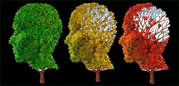 Illustration of leaves on trees shaped as human heads changing colors to indicate aging