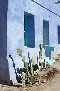 Photograph of characteristic Tucson residential architecture with cacti