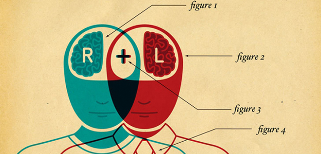 Right brain, left brain collaborating - illustration