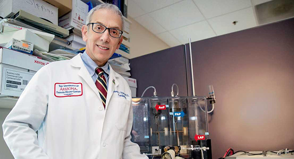 Marvin J. Slepian, MD, in his Sarver Heart Center lab