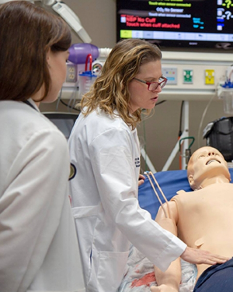 Teaser image of Dr. Laura Meinke working with students in the ASTEC sim lab at the UA College of Medicine - Tucson