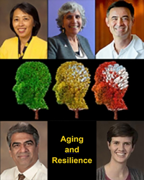 Teaser image Aging and Resilience/CHiiLi Program awards story