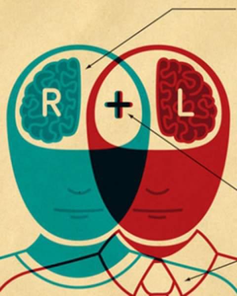 Right brain, left brain collaborating - illustration