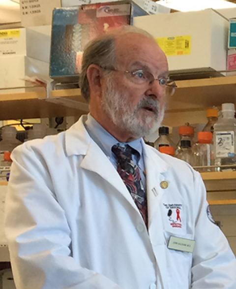 John Galgiani, MD, in lab