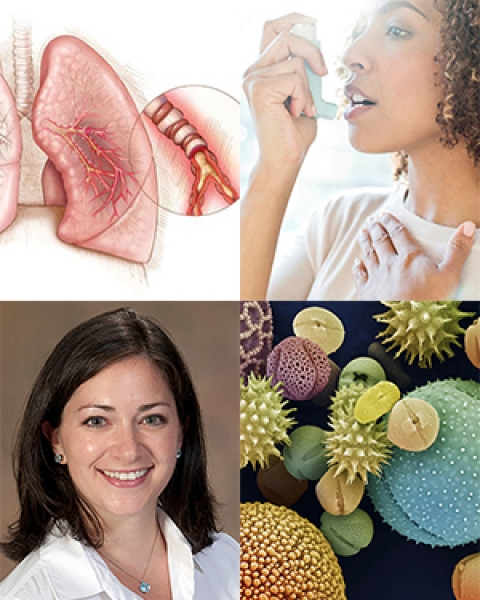 Allergy collage with Dr. Tara Carr