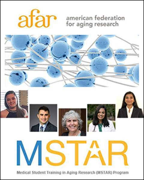 Teaser image for story on MSTAR Scholars from the University of Arizona and where they went to do geriatrics research in Summer 2019