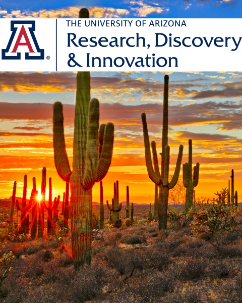 Teaser image of saguaro cactus at sunset with UA Research, Discovery & Innovation logo