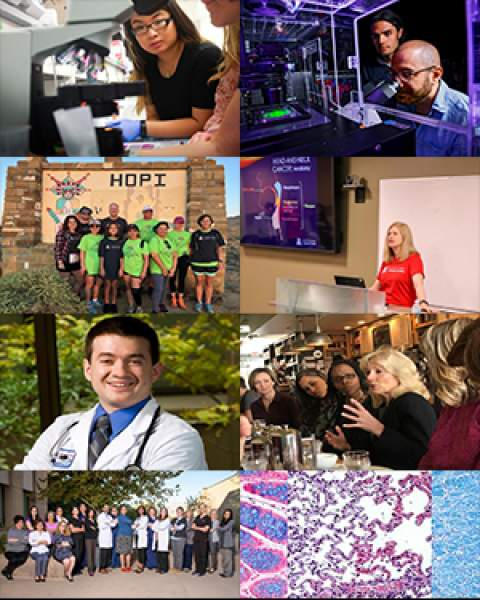 Collage of images from September 2018 issue of UACC Newsletter