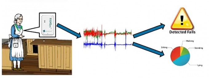 An illustration of the sensor work in detecting falls