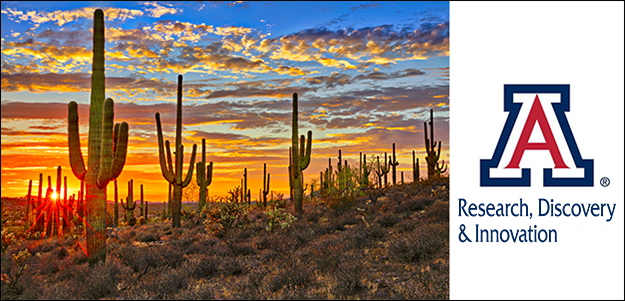Saguaro sunset with logo for Office of Research, Discovery and Innovation at the University of Arizona